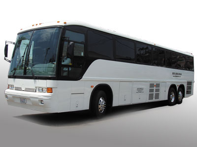 Bachelor / Bachelorette Party Buses / Limousine Service Shuttle Bus